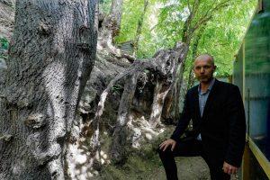 Especialista descobre local de última pintura de Van Gogh 1